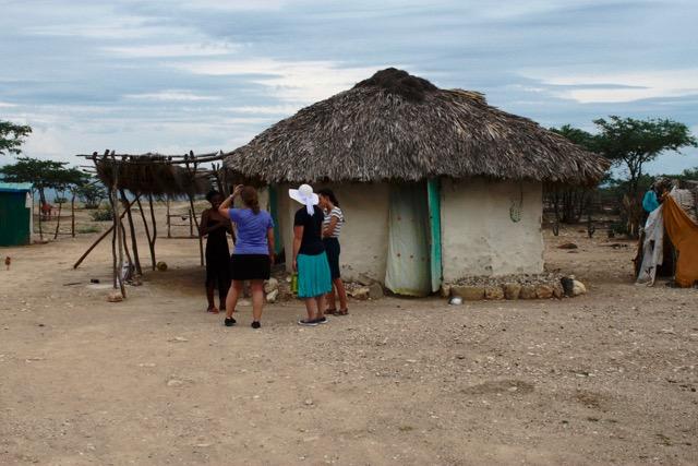 Samuel's Trees Bring Hope to Haiti Community